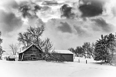 Winter Gloaming - Bw Art Print by Steve Harrington