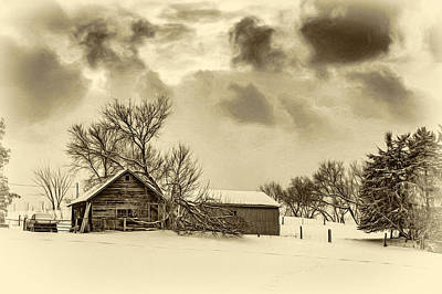 Winter Gloaming - Sepia Art Print by Steve Harrington