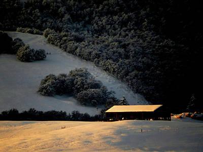 Mistletoe - Winter Glow by Jacqueline  DiAnne Wasson