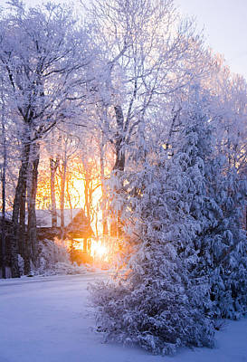 Photograph - Winter Glow by Parker Cunningham