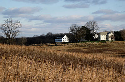 Pennsbury Photograph - Winter Gold by Gordon Beck