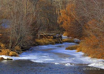 Photograph - Winter Gold On The Yakima River by Carol Groenen
