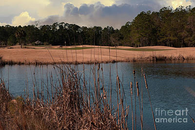 Photograph - Winter Golfing by Dale Powell
