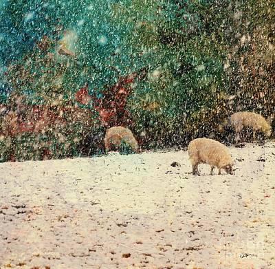 Snowstorm Mixed Media - Winter Graze by Callan Percy