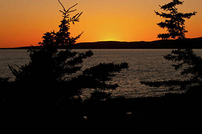 Photograph - Winter Harbor At Dusk by Paul Mangold