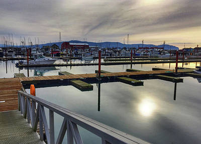 Photograph - Winter Harbor by Chriss Pagani