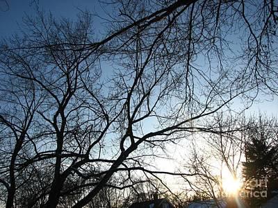 Photograph - Winter Haze by Amanda Kessel