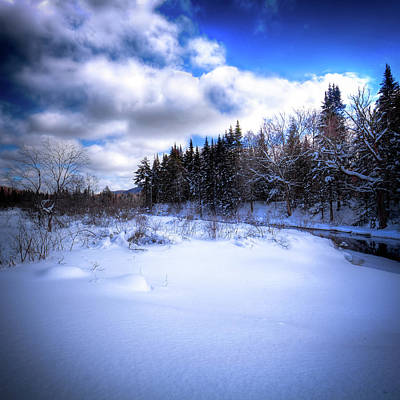 Art Print featuring the photograph Winter Highlights by David Patterson