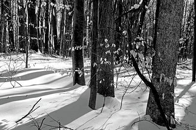 Photograph - Winter Hiking Trail Bw 021218 by Mary Bedy