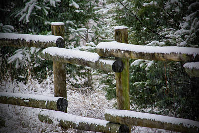 Photograph - Winter Hitching Post by Tikvah's Hope