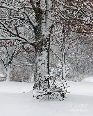 Winter Hush Art Print by Diane E Berry
