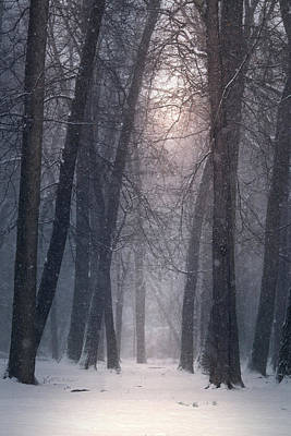 Photograph - Winter Hush by Rob Blair