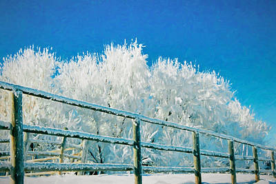 Photograph - Winter Impressions by Greg Norrell