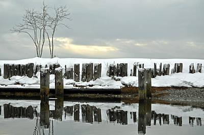 Winter In Birch Bay Art Print by Matthew Adair