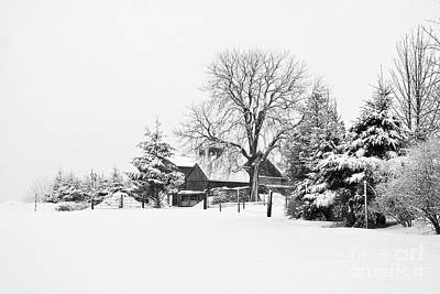 Photograph - Winter In Black And White Fleckl, Germany 2 by Tatiana Travelways
