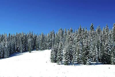 Photograph - Winter In Colorado  by Benedict Heekwan Yang