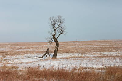 Winter In Kansas Art Print
