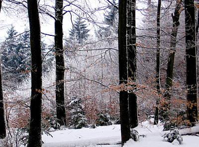 Winter In Krauchthal II Art Print by David Ritsema