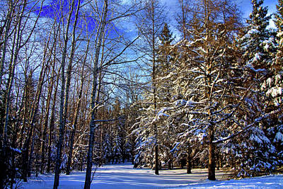Winter In Maine Art Print by Gary Smith