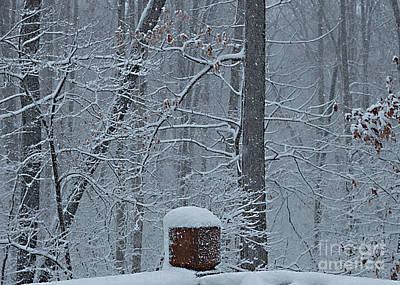 Photograph - Winter In Missouri No. 1 by Sherry Hallemeier