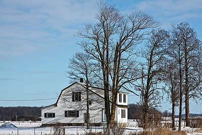 Photograph - Winter In Ontario by Tatiana Travelways