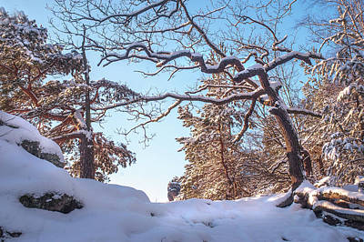 Photograph - Winter In Saxon Switzerland by Jenny Rainbow