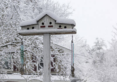 Photograph - Winter In Spring Birdhouse 3 by Keith Mucha