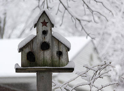 Photograph - Winter In Spring Birdhouse 4 by Keith Mucha