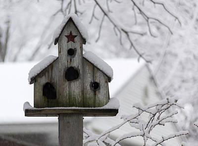 Animal Watercolors Juan Bosco - Winter in Spring Birdhouse 4 by Teresa Mucha