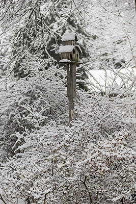 Photograph - Winter In Spring Birdhouse 5 by Keith Mucha