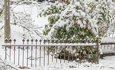 Photograph - Winter In Spring Snowy Fence by Keith Mucha