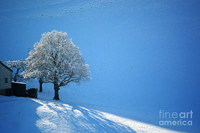Wall Art - Photograph - Winter In Switzerland - Snow And Sunshine by Susanne Van Hulst