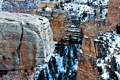 Photograph - Winter In The Canyon by Kim Wilson