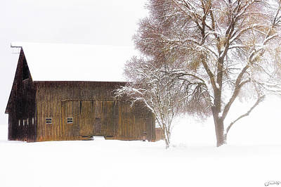 Winter In The Country Art Print