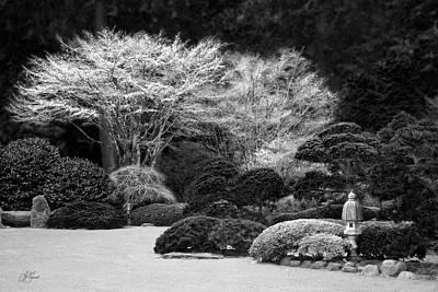 Photograph - Winter In The Garden by Lori Grimmett