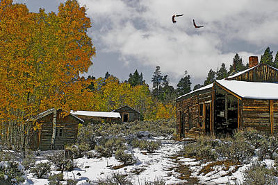 Winter In The High Country Art Print by Julie Grace