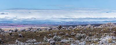Photograph - Winter In The High Desert by Susan Warren