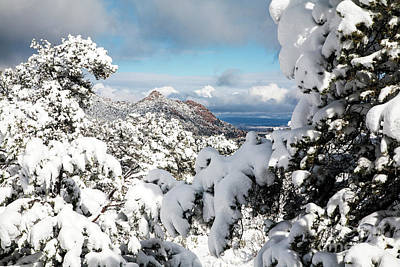 Photograph - Winter In The Mountains by Scott Kemper