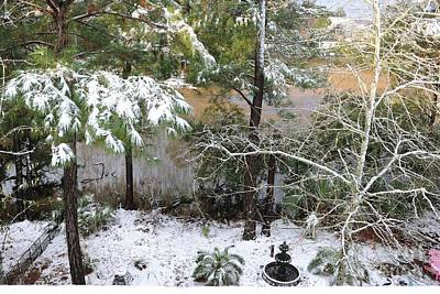 Photograph - Winter In The South by Dale Powell