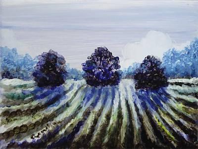 Winter In The Vineyard Art Print by Shelley Capovilla