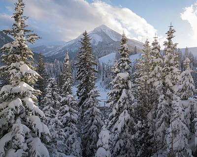 Wasatch Wall Art - Photograph - Winter In The Wasatch by James Udall