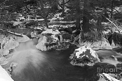Photograph - Winter In The Wilderess Black And White by John Stephens