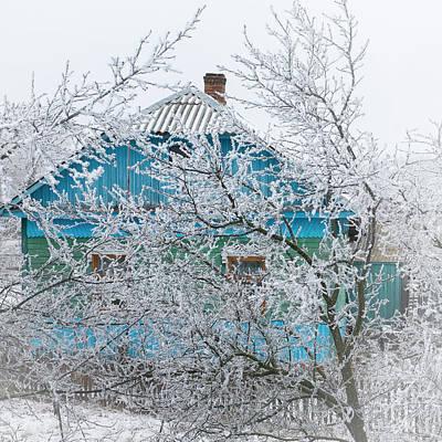 Winter In Village. Shchymel, 2014. Art Print