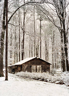 Photograph - Winter In Virginia by Kathy K McClellan
