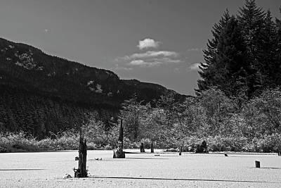 Photograph - Winter by Inge Riis McDonald