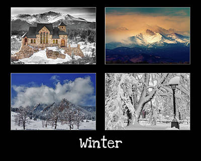 Photograph - Winter by James BO Insogna