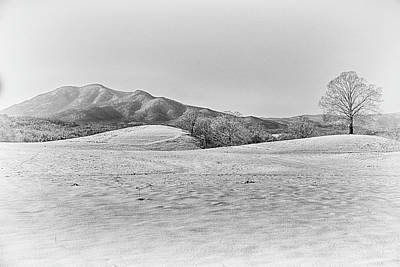 Photograph - Winter by Kevin Senter