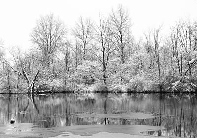 Photograph - Winter Lake by Dan Sproul