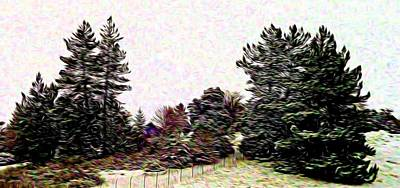 Vermeer Rights Managed Images - Winter Landscape 1 In Abstract Royalty-Free Image by Kristalin Davis