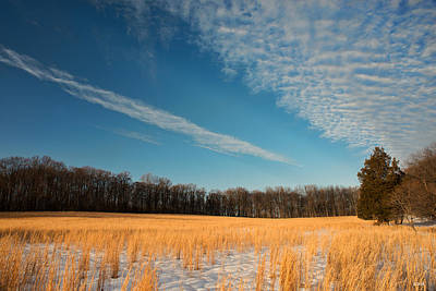 Photograph - Winter Landscape 2 by Dana Sohr